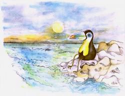 toekan starend over de zee